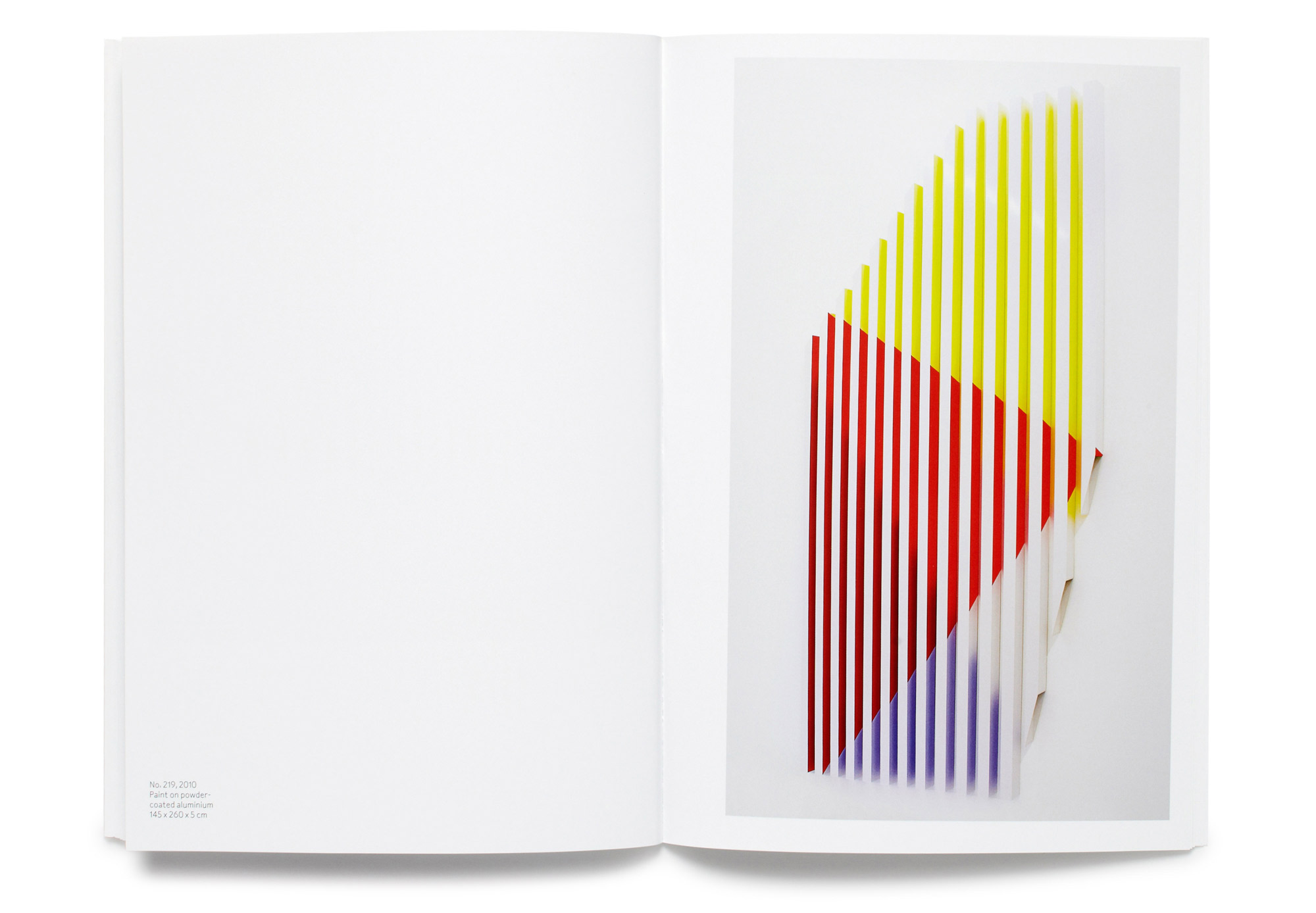 Daniel Baer – Rana&nbsp;Begum Catalogue.<i> Bischoff/Weiss Gallery</i> 10