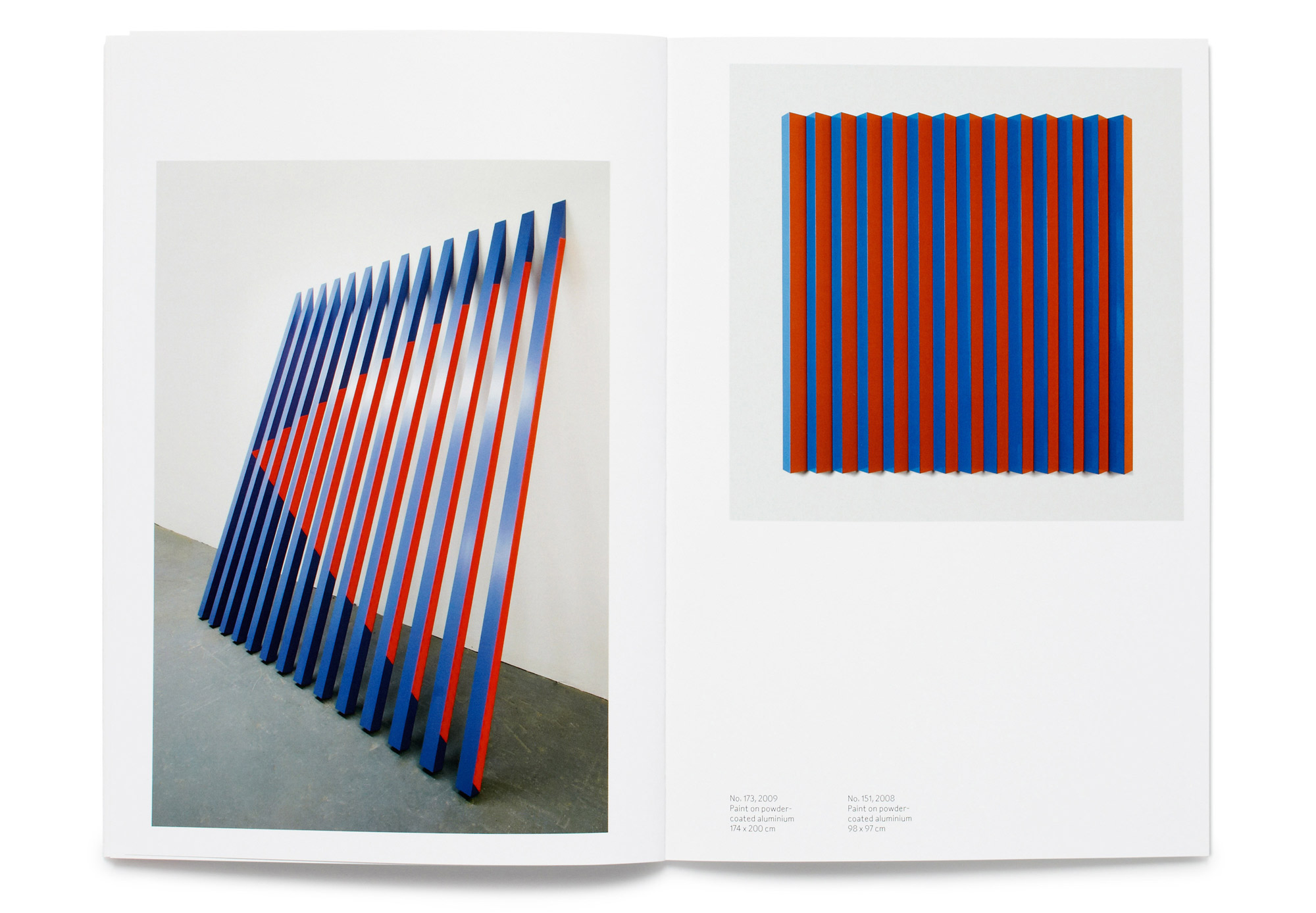 Daniel Baer – Rana&nbsp;Begum Catalogue.<i> Bischoff/Weiss Gallery</i> 5