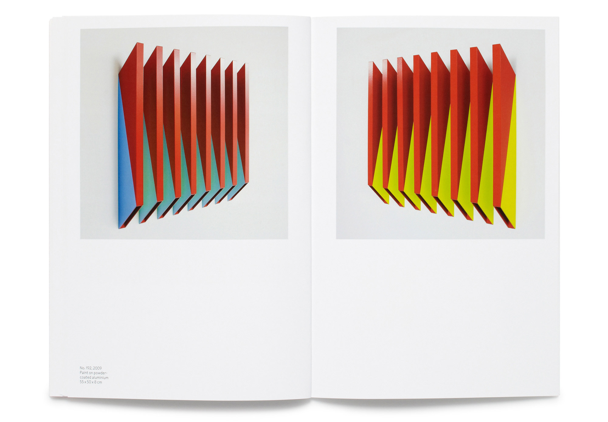 Daniel Baer – Rana&nbsp;Begum Catalogue.<i> Bischoff/Weiss Gallery</i> 8
