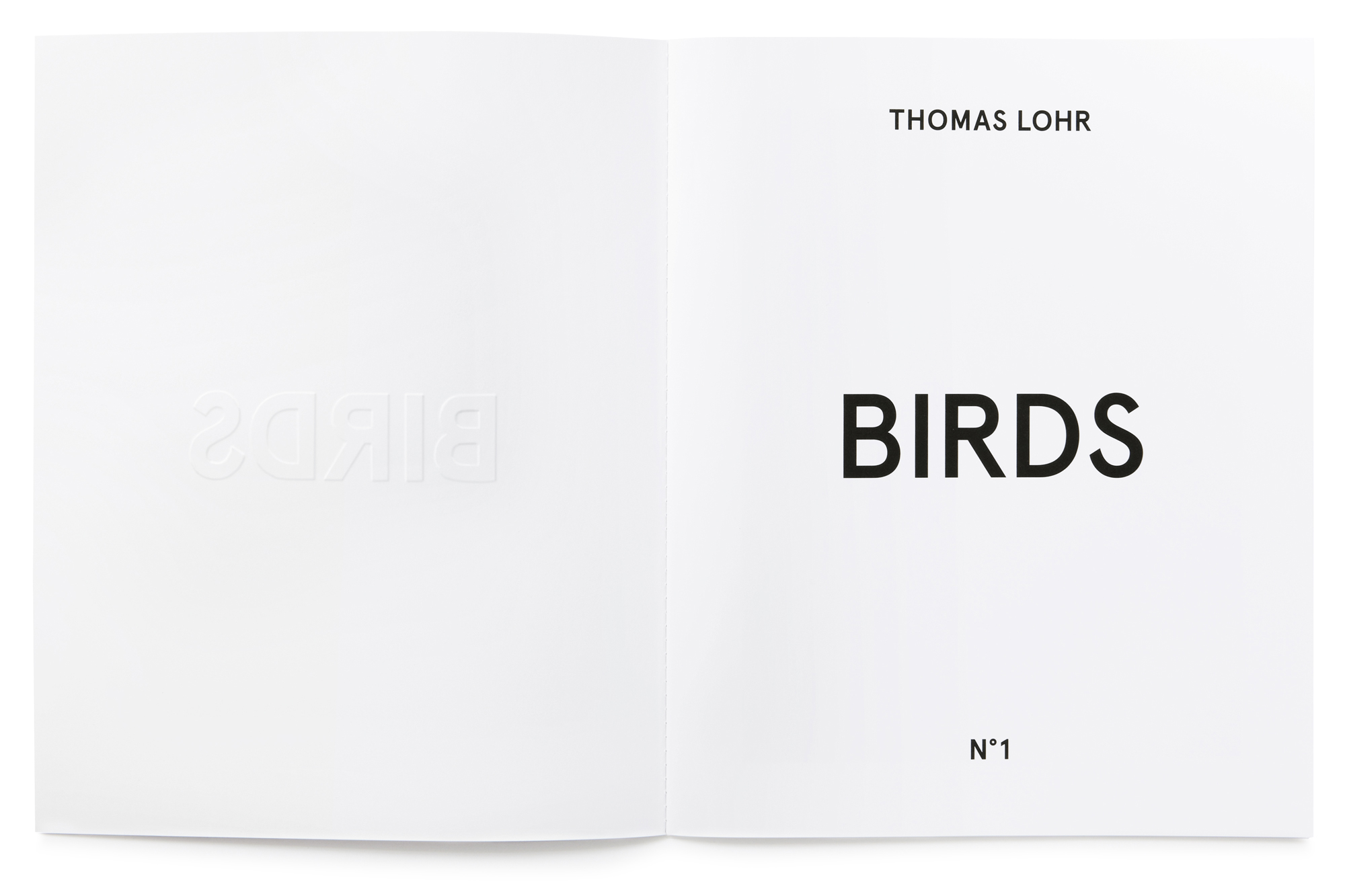 Daniel Baer – Birds – Publication. <i>Thomas Lohr</i> 3